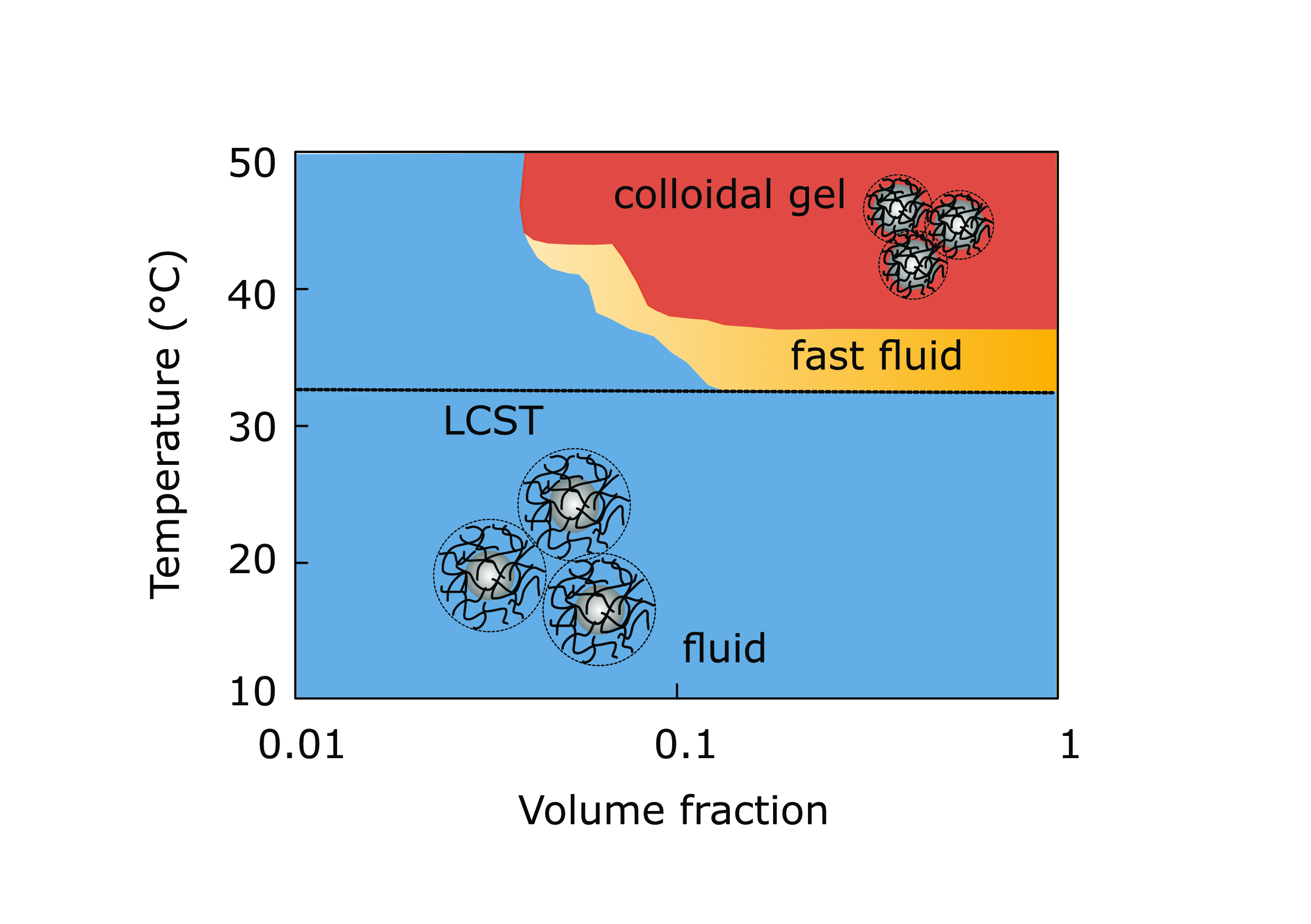 Full phase diagram of silica PNIPAm showing dependence of the collapse on temperature and volume fraction